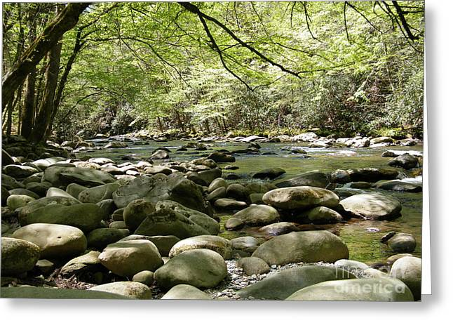 Gatlinburg Tennessee Greeting Cards - Quiet Place in the Smokies Greeting Card by Cheryl Hardt Art