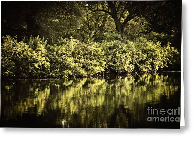 Vibrant Green Greeting Cards - Quiet reflections Greeting Card by Elena Elisseeva