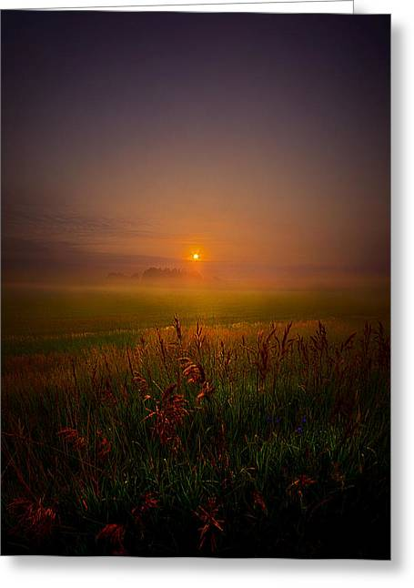 Mist Photographs Greeting Cards - Quietly Greeting Card by Phil Koch