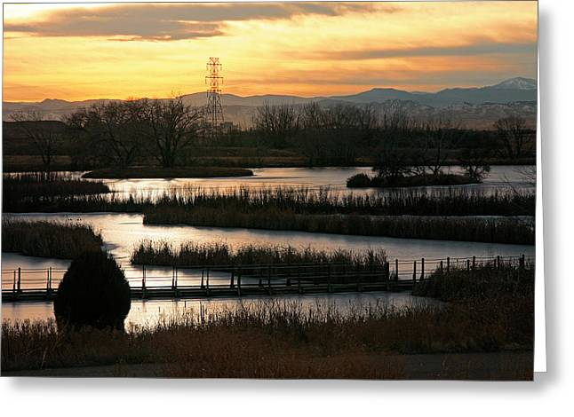 Dusk At The Lake Greeting Cards - Quietude Greeting Card by Mike Flynn