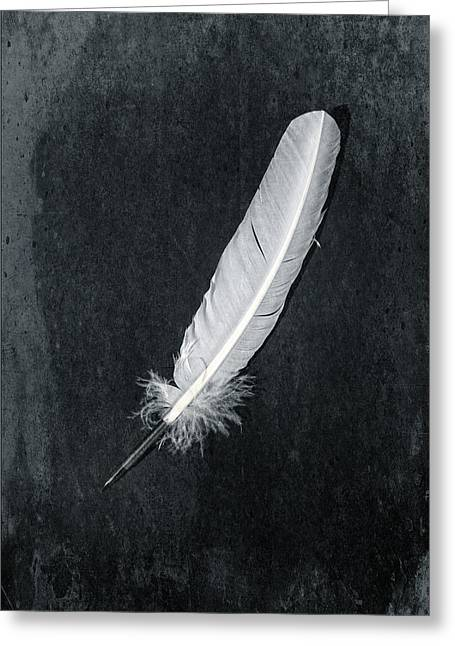 Quill Greeting Card by Joana Kruse