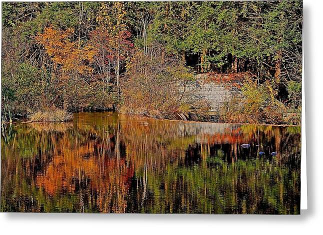 Central Ma Greeting Cards - Quinapoxet River Reflection 1 Greeting Card by Michael Saunders