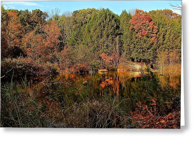 Central Ma Greeting Cards - Quinapoxet River Reflection 2 Greeting Card by Michael Saunders