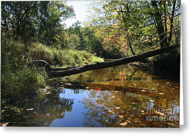Landscape Photography Greeting Cards - Quinnebaug Reflections  Greeting Card by Neal  Eslinger