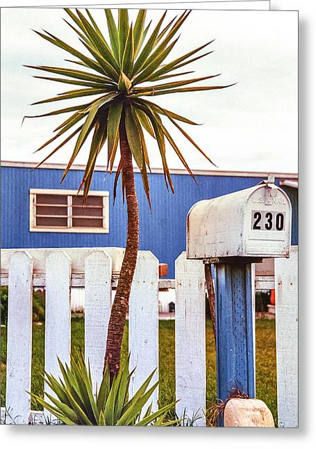 Quintessential Greeting Cards - Quintessential California Greeting Card by Caitlyn  Grasso