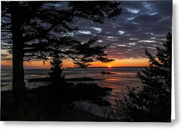 Ocean Vistas Greeting Cards - Quoddy Sunrise Greeting Card by Marty Saccone