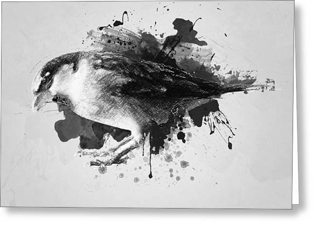 Crow. Bird Music Greeting Cards - Qush Greeting Card by Taylan Soyturk