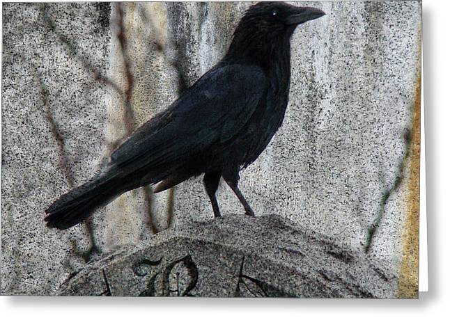 R Is For Raven Greeting Card by Gothicolors Donna