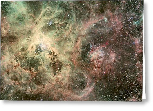 M106 Greeting Cards - R136 Doradus Nebula Magellanic Cloud Greeting Card by Celestial Images