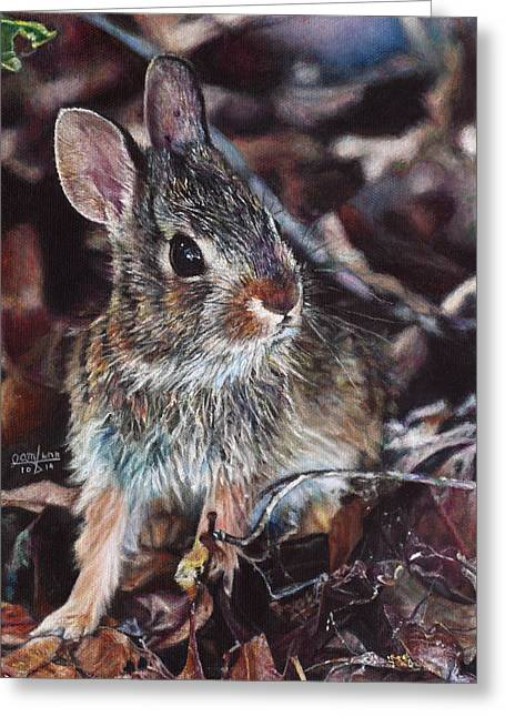 Hyper-realism Paintings Greeting Cards - Rabbit in the Woods Greeting Card by Joshua Martin