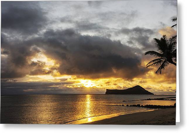 Sand And Sea Greeting Cards - Rabbit Island Sunrise - Oahu Hawaii Greeting Card by Brian Harig
