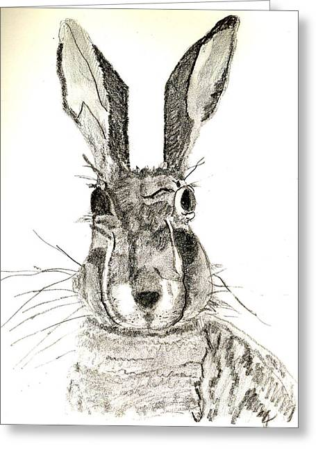 Journal Drawings Greeting Cards - Rabbit Greeting Card by Sandy McIntire