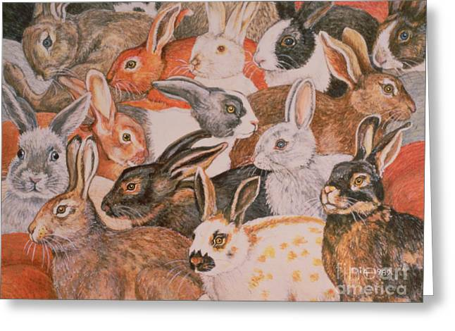 Rabbit Spread Greeting Card by Ditz