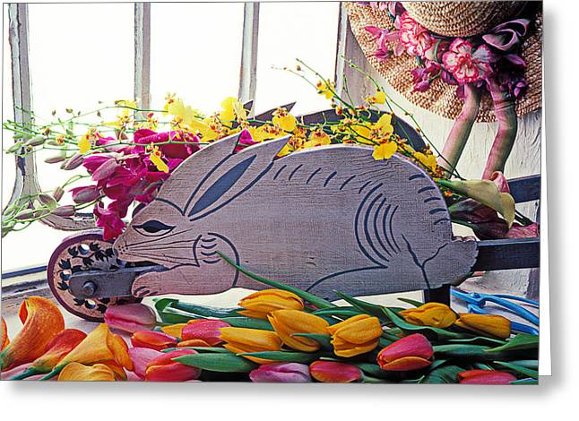 Calla Lily Greeting Cards - Rabbit wheel barrow Greeting Card by Garry Gay