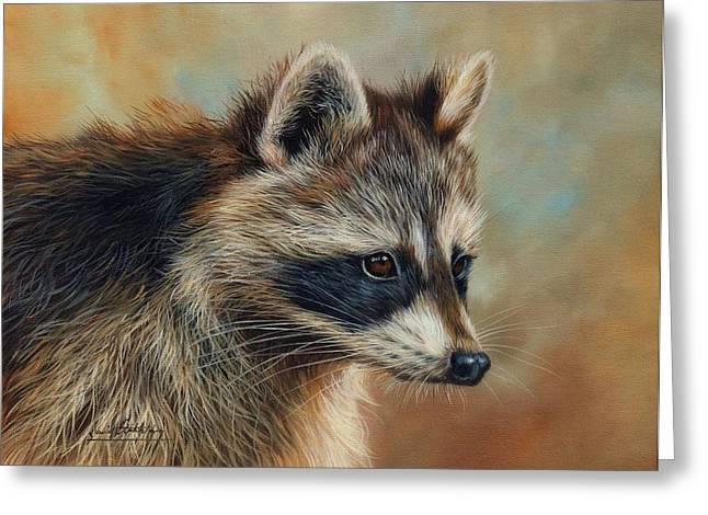 Raccoons Greeting Cards - Raccoon Greeting Card by David Stribbling