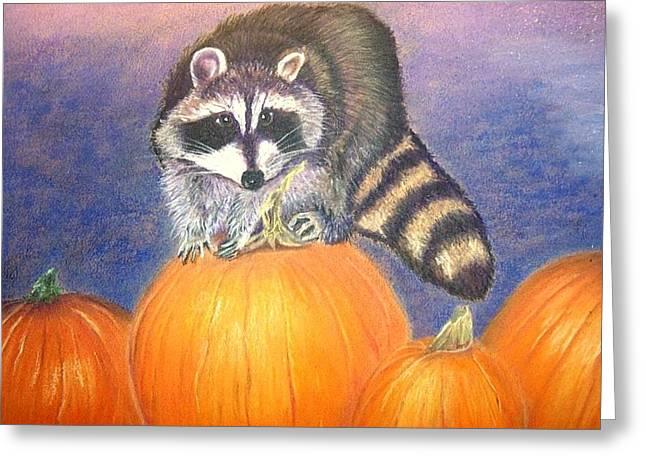 Pumpkins Pastels Greeting Cards - Raccoon on Pumpkins Greeting Card by Jay Johnston