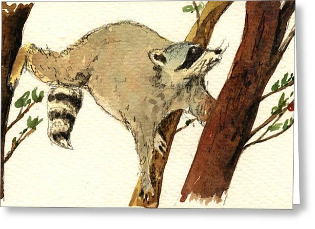 Raccoon On Tree Greeting Card by Juan  Bosco