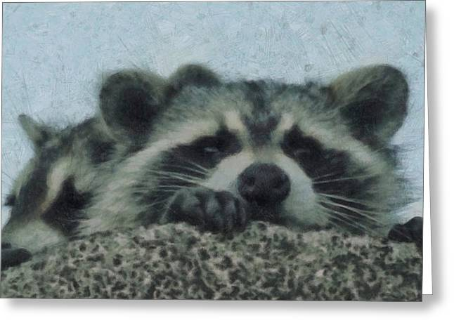 Raccoon Digital Art Greeting Cards - Raccoons Painterly Greeting Card by Ernie Echols