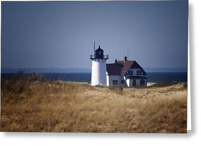 Race Point Greeting Cards - Race Point Light Greeting Card by Dapixara Art