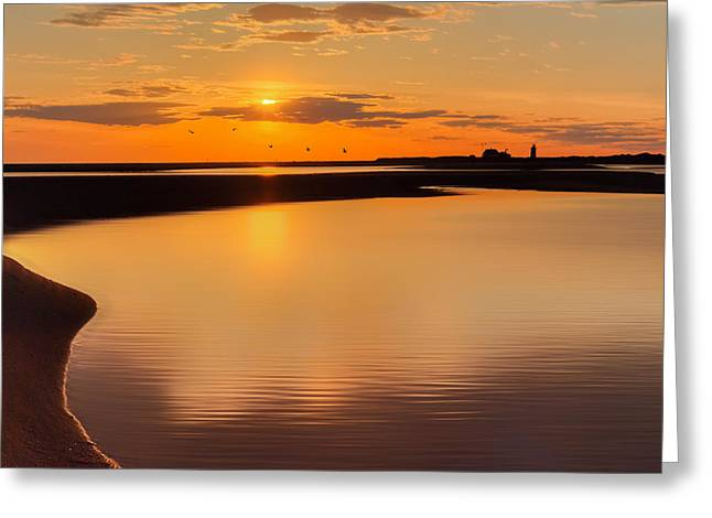 Race Point Greeting Cards - Race Point Silhouette Greeting Card by Bill  Wakeley