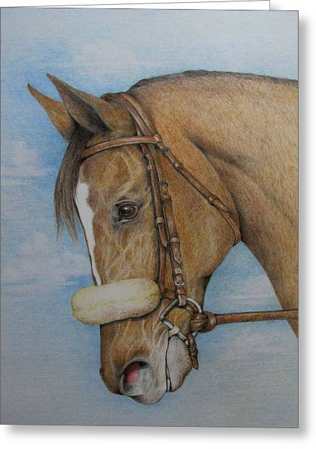 Belmont Stakes Greeting Cards - Zenyatta Greeting Card by Catherine Howley