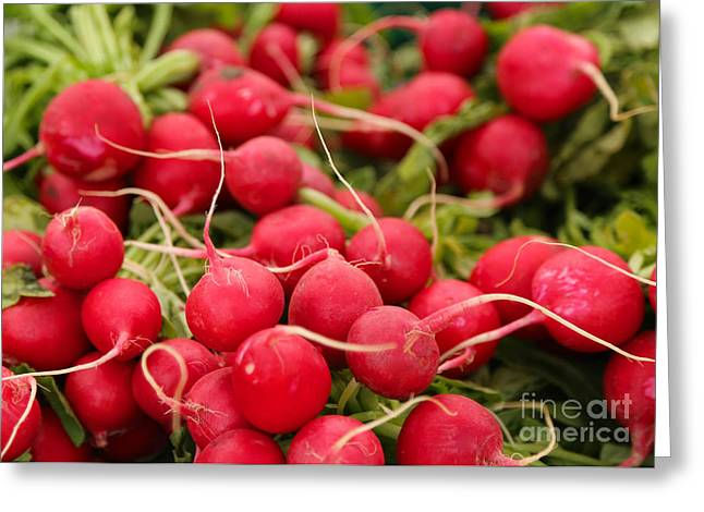 Red Radish Greeting Cards - Radishes Greeting Card by Carol Groenen