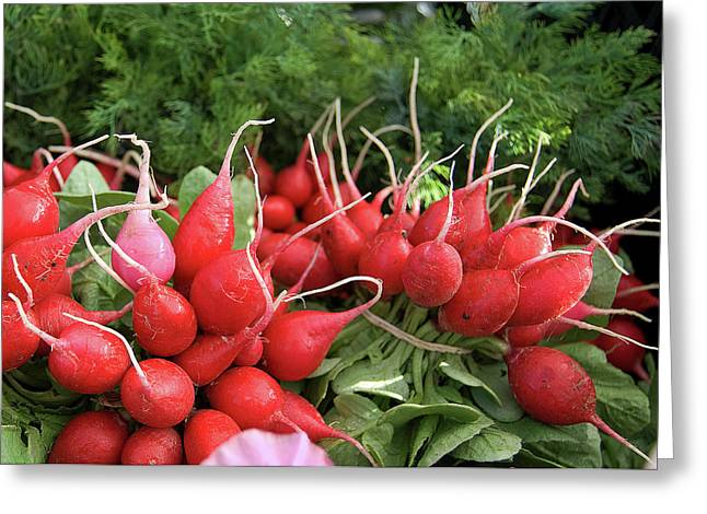 Fresh Radishes Greeting Cards - Radishes Greeting Card by Charlette Miller
