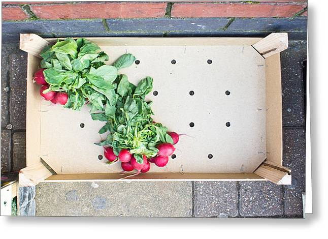 Wooden Box Greeting Cards - Radishes Greeting Card by Tom Gowanlock