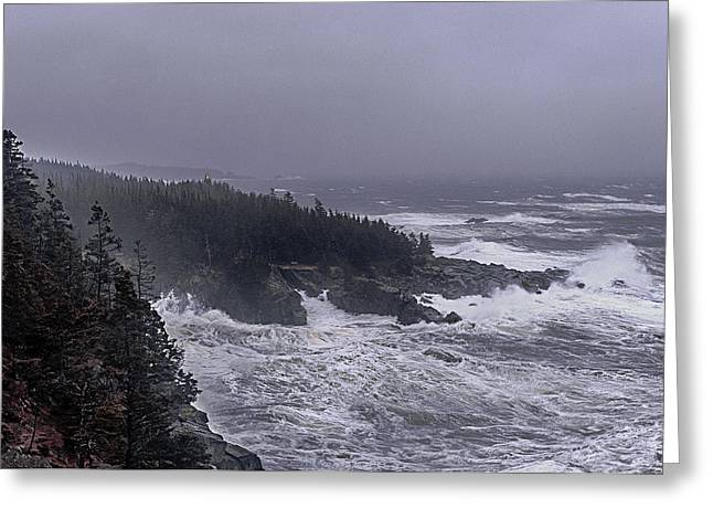 Storm Prints Greeting Cards - Raging Fury at Quoddy Greeting Card by Marty Saccone
