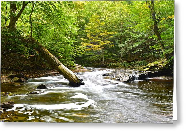 Forceful Greeting Cards - Raging river Greeting Card by Frozen in Time Fine Art Photography