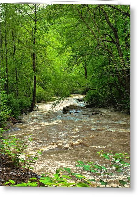 Top Seller Greeting Cards - Raging Waters - West Virginia Backroad Greeting Card by Paulette B Wright