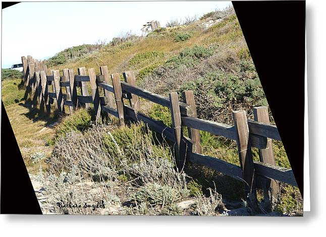 Rail Fence Black Greeting Card by Barbara Snyder
