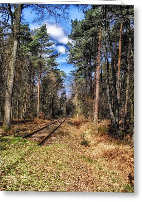 Rail Line Greeting Cards - Rail Through Germany Greeting Card by Mountain Dreams