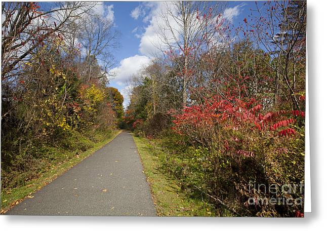 Berkshires Of New England Greeting Cards - Rail Trail Greeting Card by Jonathan Welch