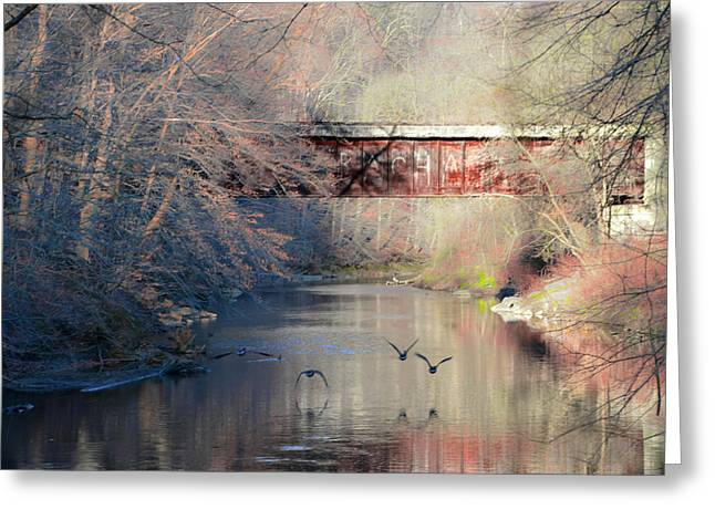 Railroad Bridge Greeting Cards - Railroad Bridge over Chester Creek Greeting Card by Bill Cannon