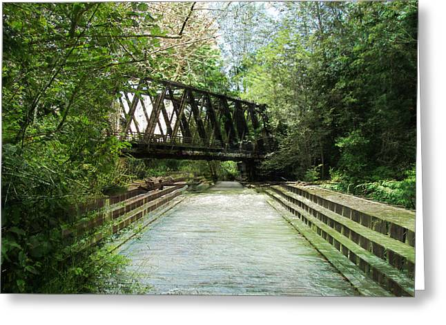 Railroad Bridge Park - Dungeness River Greeting Card by Marie Jamieson