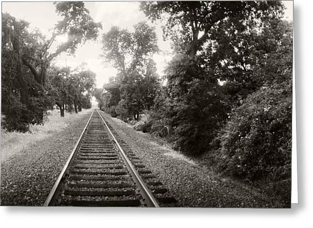 Napa Greeting Cards - Railroad Track, Napa Valley Greeting Card by Panoramic Images