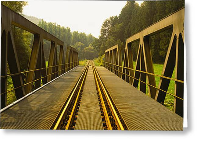 Diminishing Perspective Greeting Cards - Railroad Tracks Passing Greeting Card by Panoramic Images
