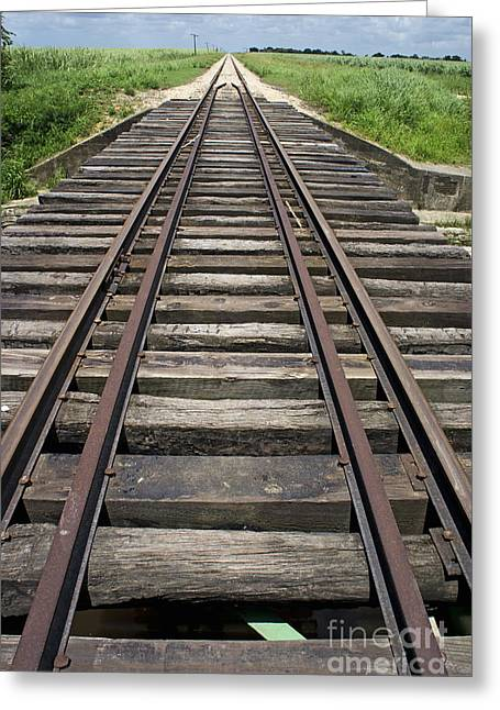 Railroad Tracks Greeting Card by Sami Sarkis