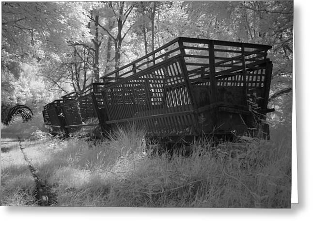 Rails and trains of a locomotive in infrared light in Netherlands Greeting Card by Ronald Jansen