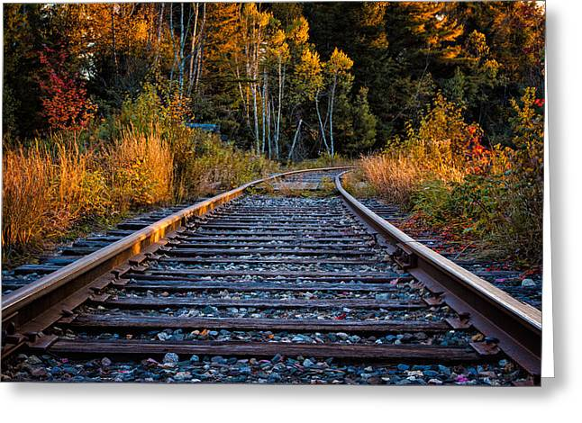 Foliage In White Mountains Greeting Cards - Rails Pondicherry NWR Greeting Card by Jeff Sinon