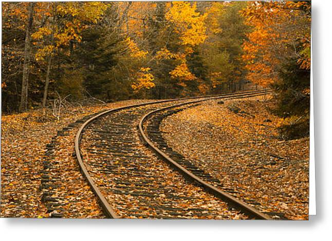 Maine Landscape Greeting Cards - Rails to Autumn Greeting Card by Patrick Downey