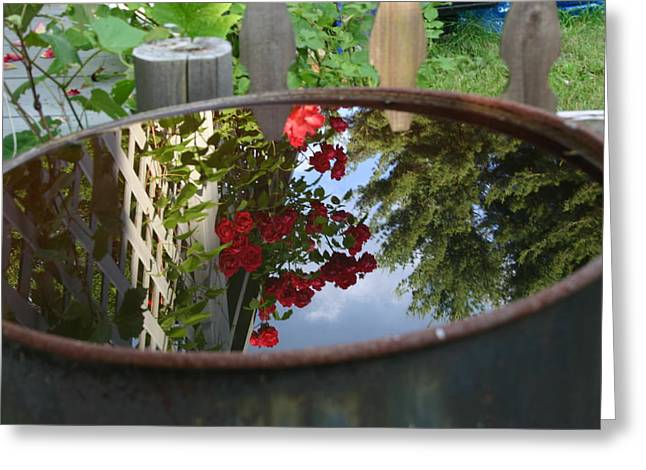 Rain Barrel Greeting Card by Carla  Kutt