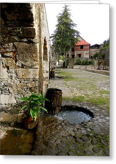 Rain Barrel Photographs Greeting Cards - Rain Barrel Old Castle  Greeting Card by Joe Wyman