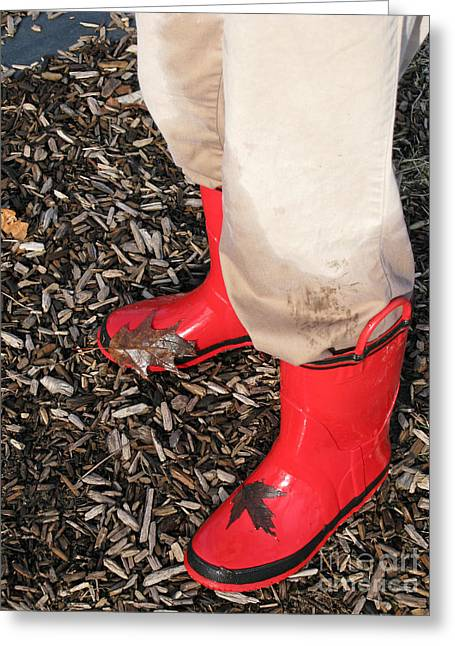Wellingtons Greeting Cards - Rain Boots aka Wellies Greeting Card by Ann Horn