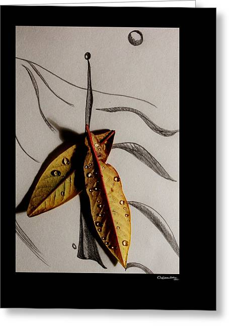 Fallen Leaf Mixed Media Greeting Cards - Rain Catcher Greeting Card by Xoanxo Cespon