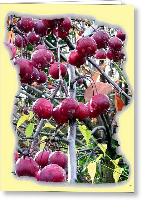 Decorative. Country Greeting Cards - Rain On The Crab Apples Greeting Card by Will Borden
