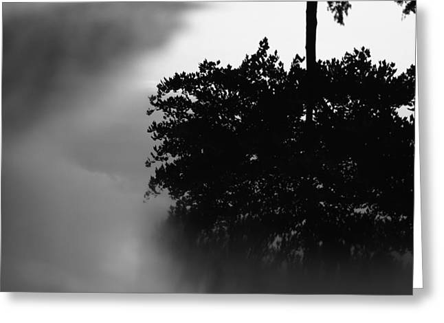 After The Storm Greeting Cards - Rain Puddle Reflection Black And White Greeting Card by Dan Sproul