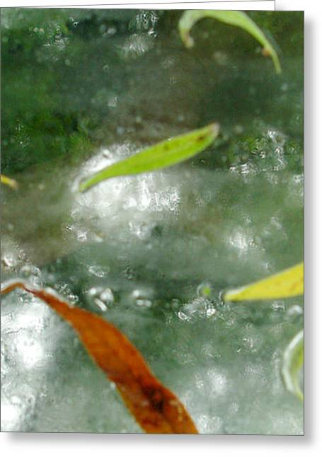 Abstract Rain Greeting Cards - Rain Greeting Card by Susie Capezzone