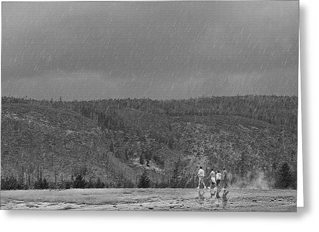 Rain Walk - Yellowstone Greeting Card by Steve Ohlsen